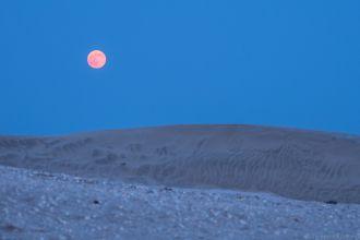 砂丘と満月